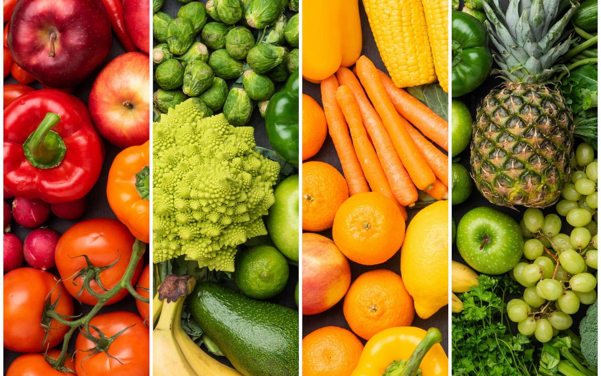 Alimentation - Santé